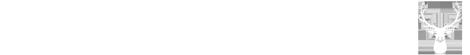 Studio Mazury – Projektowanie stron internetowych Logo
